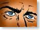 Tazl20Illu.jpg face eyes eyeballs Art - Illustration