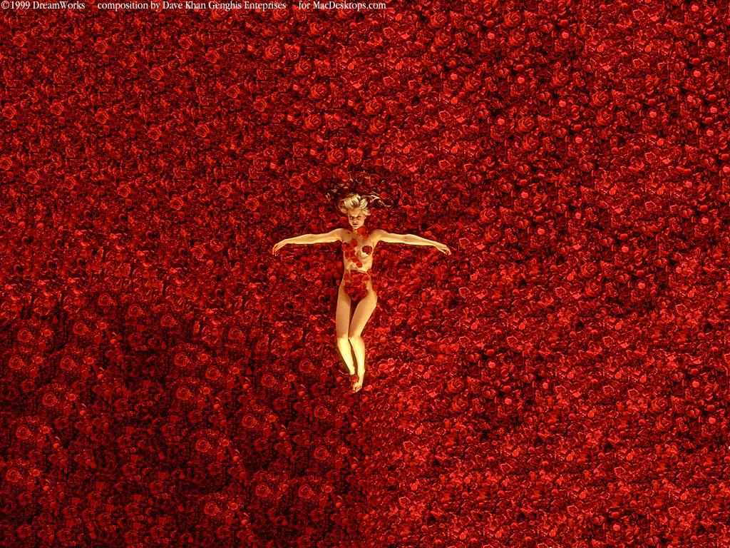 http://images.macdesktops.com/images/1024x768/DKAmericanBeauty1024x768.jpg