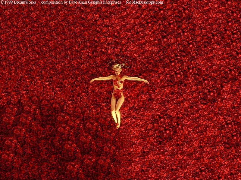 http://images.macdesktops.com/images/800x600/DKAmericanBeauty800x600.jpg